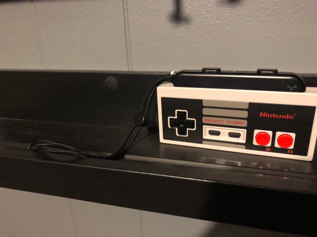NES Controls from Nintendo Switch Online are compatible with